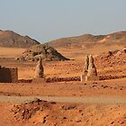 Avenue of Sphinxes at Wadi el Seboa  by Laurel Talabere
