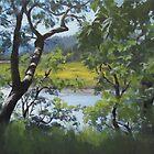 Sunny River by Karen Ilari
