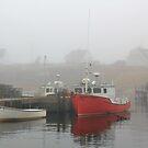 Harbour Mist by HALIFAXPHOTO