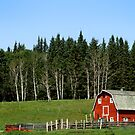 Canadian Red Barn by Sean Crease