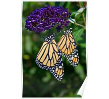 Monarch Twins Poster