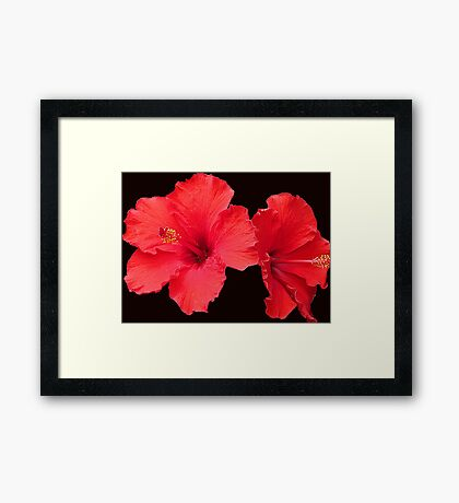 Wickedly Red Framed Print