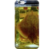 Unhappy Flatfish iPhone Case/Skin