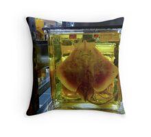 Unhappy Flatfish Throw Pillow