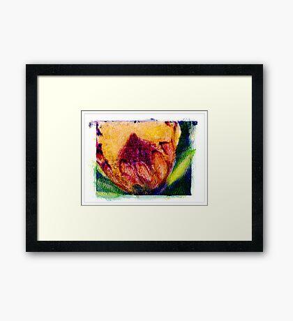 """""""Furry Flower"""" Framed Print"""
