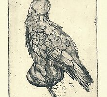 Galah - Sugarlift Etching by STHogan