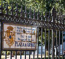 Plaza De Armas by Diego  Re
