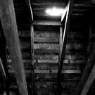 Hidden Away (best viewed Large) by Jen Waltmon