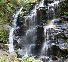 Sylvia Falls, Blue Mountains, NSW by DashTravels