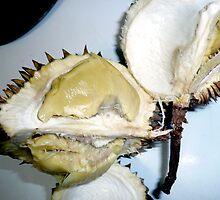 Durian by D. D.AMO