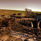 Tractor, trailer, mud & cows by Rob Hawkins
