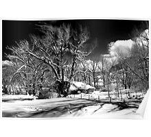 Winter Wonderland - Eastern Sierra, CA Poster