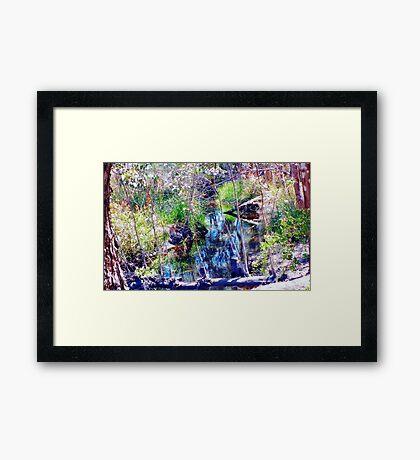paperbarks in riverton - coloured series #20 Framed Print
