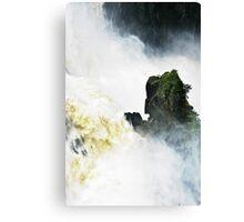 Barron Falls Canvas Print