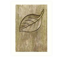 Engraved leaf Art Print