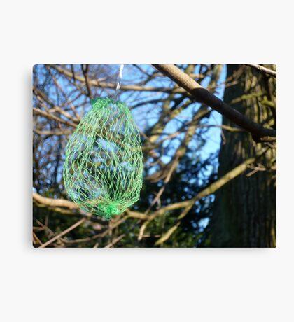 Strange Green Fruit Canvas Print