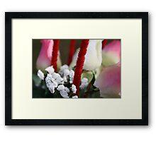 Flower - Close Up Framed Print