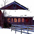 The Cider House by Brian Gaynor