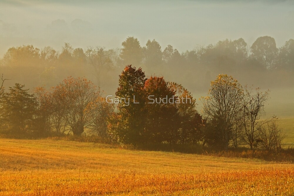 Misty Morn by Gary L   Suddath