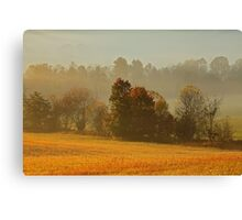Misty Morn Canvas Print