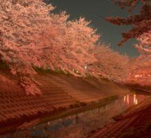 Sakura - Cherry Blossoms Sticker