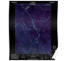 USGS Topo Map Oregon Silver Butte 281506 1995 24000 Inverted Poster