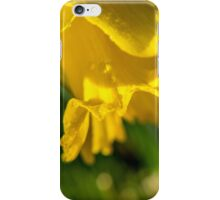 Daffy Macro iPhone Case/Skin