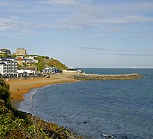 Ventnor Bay by Rod Johnson