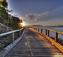 Paradise Walk by Christopher Meder Photography