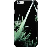 Fairy Land Night Scapes- Fairy Aeroport iPhone Case/Skin