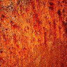 Burnt orange by Karen  Betts
