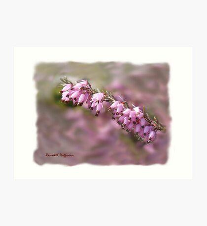 Pink Spring Art Print