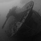 SS THISTLEGORM by markosixty6