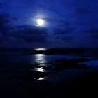 Blue Moon by Bluesoul Photography