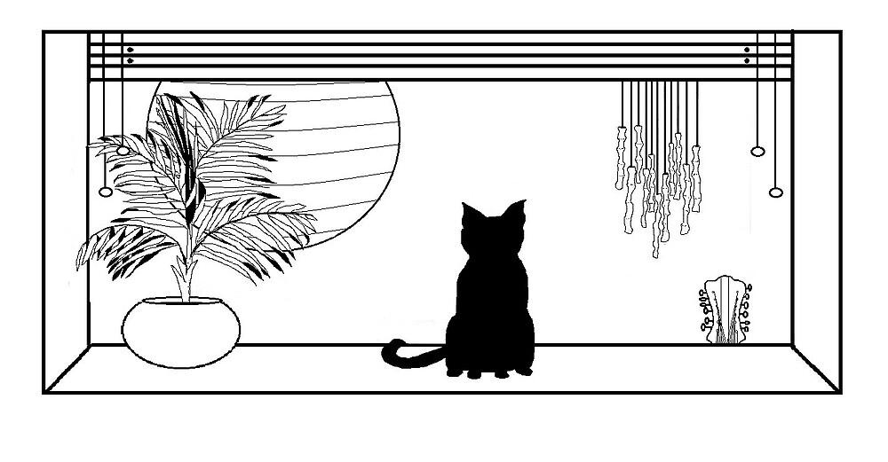 Black cat looking in by julieburnaby