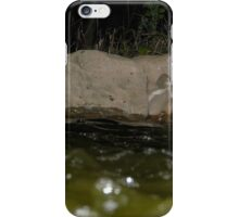 Fairy Land Night Scapes- Fairy Pond iPhone Case/Skin