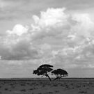 The Etosha Pan by poohsmate