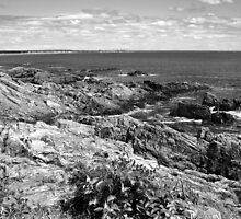 Rocky Coastline - Marginal Way, Ogunquit, Maine by Christy  Bruna