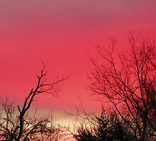 Brilliant Sunrise,  Elkins, Arkansas by David  Hughes