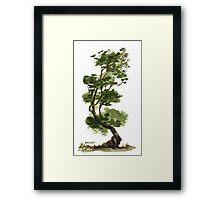 Little Tree 131 Framed Print