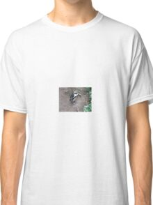 African Penguin 2, Boulders Beach, South Africa Classic T-Shirt