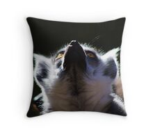 What is that loud noise?  Throw Pillow