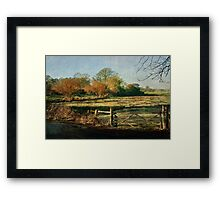 Powderham Framed Print