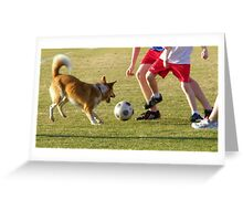 United States Naval Academy : Annapolis Soccer Dog Greeting Card