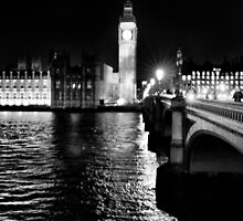 Parliament at night by larry flewers