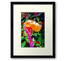 Flower spike and bloom Framed Print
