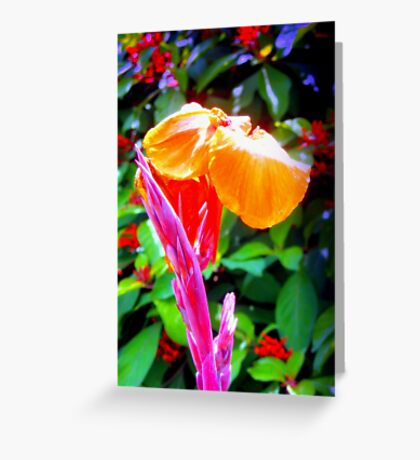 Flower spike and bloom Greeting Card
