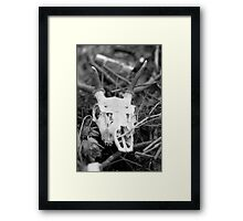 You'll Stumble In My Footsteps Framed Print