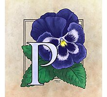 P is for Pansy Photographic Print