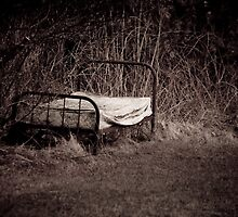 Nature's Bed by Charles Plant